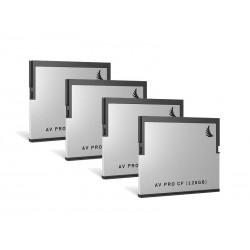 AV PRO CF 128Go Pack 4