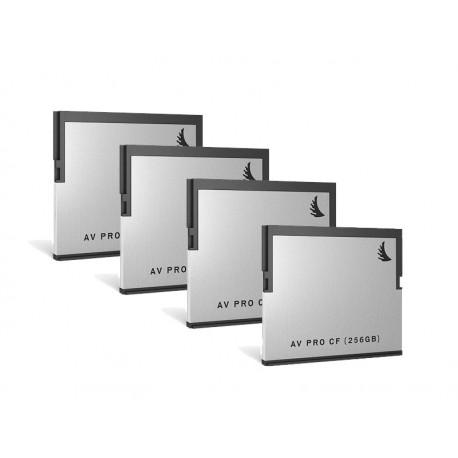 AV PRO CF 256Go Pack 4
