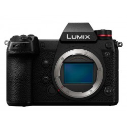 Lumix S1