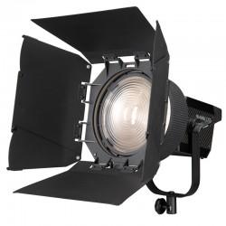 FL-20G - Fresnel Lens for forza
