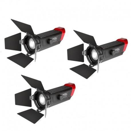LightStorm LS Mini 20 Flight Kit (DDD)